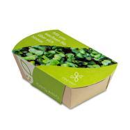 Microgreens-Gärtchen