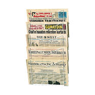Newspaper Rack I