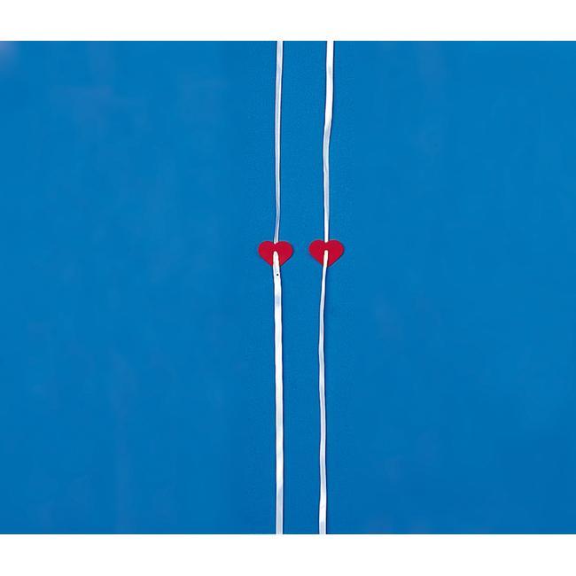 Ballonverschluss mit Polyband