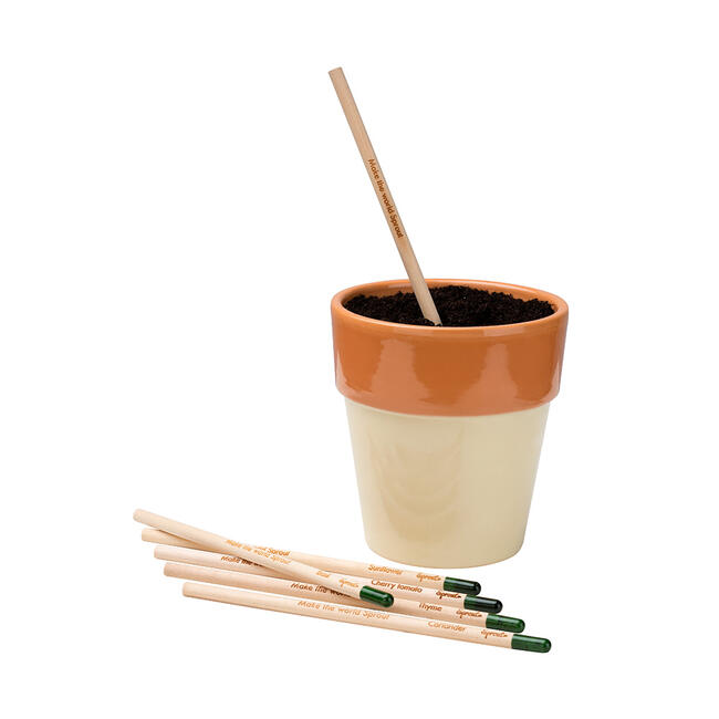 """Bleistift """"Sprout"""",  der einpflanzbare Bleistift"""